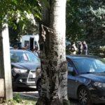 12 лет строгого режима — приговор Константину Ширингу